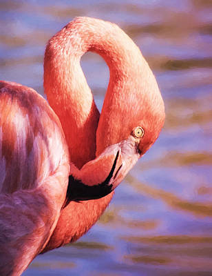 Wall Art - Photograph - Flamingo Portrait Painting by Martin Belan