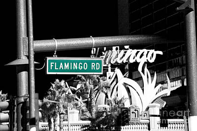 Photograph - Flamingo Road Fusion by John Rizzuto