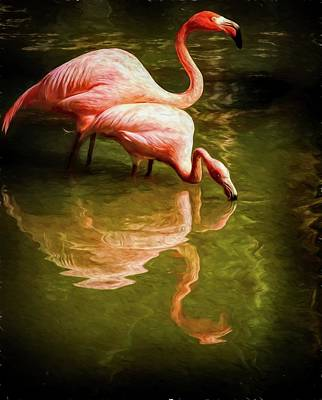 Photograph - Flamingo Sipping Couple by Alice Gipson