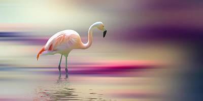 Flamingo Digital Art - Flamingo Skies 2 by Sharon Lisa Clarke