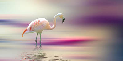 Flamingo Digital Art - Flamingo Skies by Sharon Lisa Clarke