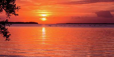 Photograph - Flamingo Sunrise by Jennifer