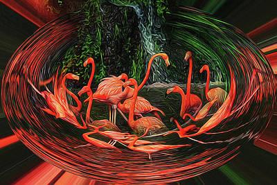 Digital Art - Flamingo Swirl by Sue Masterson