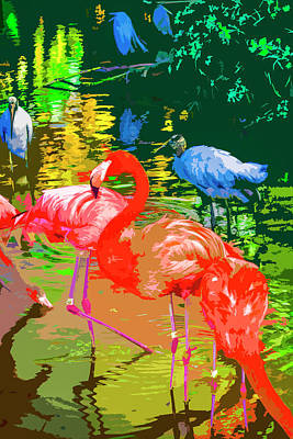 Photograph - Flamingo Time by Josy Cue