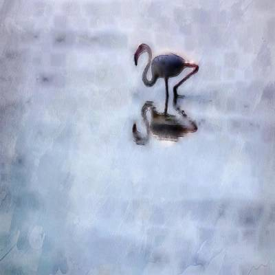 Painting - Flamingo Walking In Heather Water by Tracey Harrington-Simpson