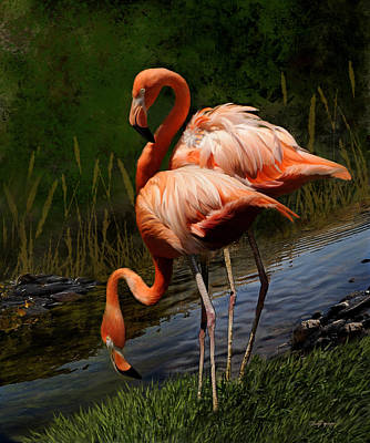 Flamingo Digital Art - Flamingos by Thanh Thuy Nguyen