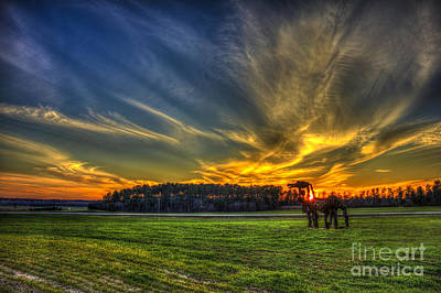 Photograph - Flash The Iron Horse Sunset by Reid Callaway