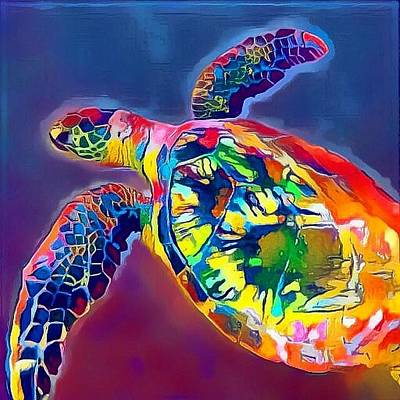 Digital Art - Flash The Turtle by Erika Swartzkopf