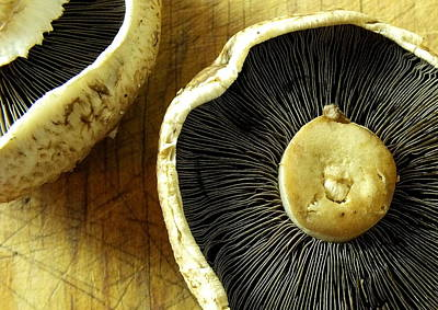 Photograph - Flat Brown Mushrooms by Guy Pettingell