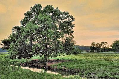 Photograph - Flat Creek In The Evening by Jan Amiss Photography