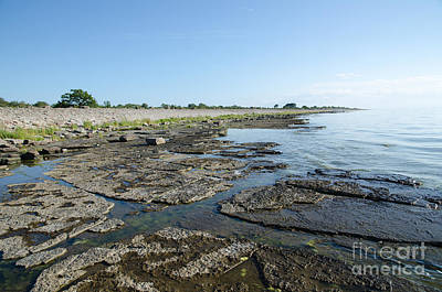 Photograph - Flat Rock Limestone Coast by Kennerth and Birgitta Kullman