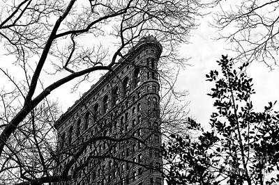 Photograph - Flatiron Profile by John Rizzuto