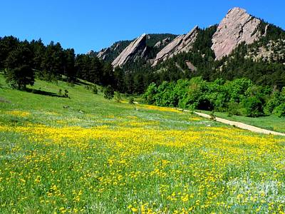 Flatirons And Yellow Meadow Art Print