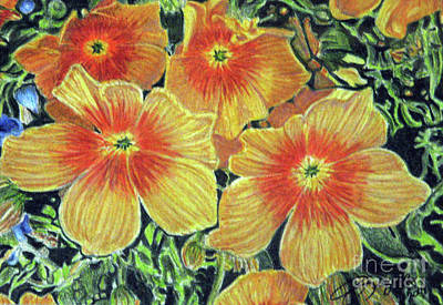 Fuqua - Artwork Drawing - Flax by Beverly Fuqua