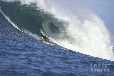 Photograph - Flea On A Mavericks Giant by Stan and Anne Foster
