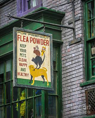 Flea Powder Art Print