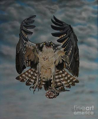 Painting - Fleck The Osprey  by Bob Williams