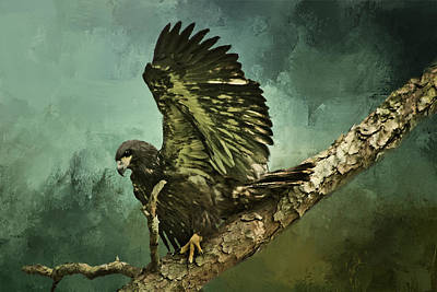 Digital Art - Fledgling Eagle by TnBackroadsPhotos