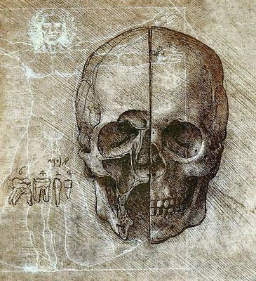 Proportions Digital Art - Flesh And Bone - Da Vinci by Daniel Hagerman