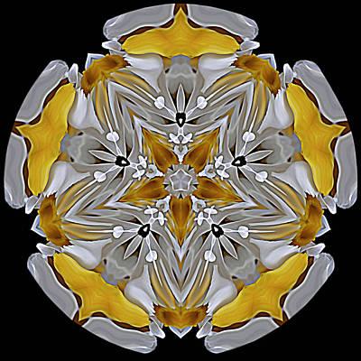 Digital Art - Fleur D'arte by Cyndy Doty