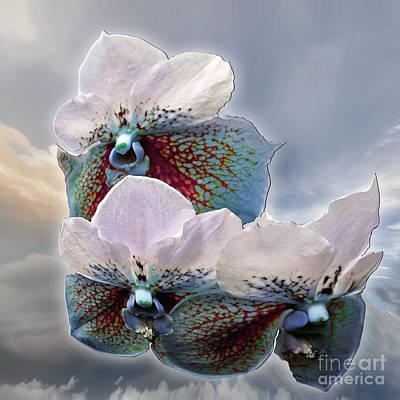 Fleur De Celeste Art Print