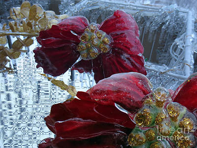 Slick Digital Art - Fleur De Glace // Poinsettia // Ice Flower by Dominique Fortier