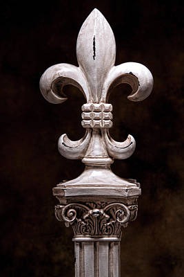 Decor Photograph - Fleur De Lis Iv by Tom Mc Nemar