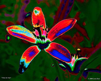 Digital Art - Fleur De Nuit by Larry Beat
