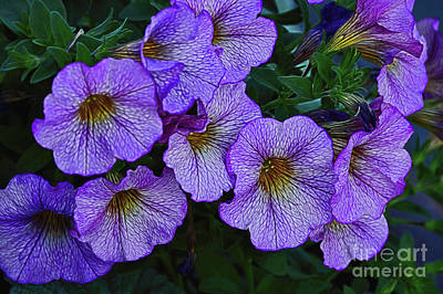 Photograph - Fleurs Pourpres by Diana Mary Sharpton