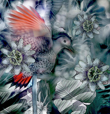 Digital Art - Flicker And Passion Flowers by Annie Omens