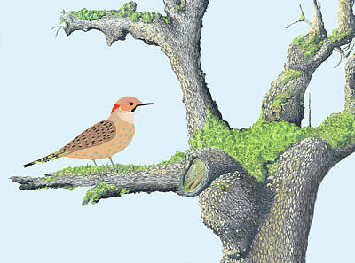 Digital Art - Flicker In The Apple Tree by Gary Giacomelli