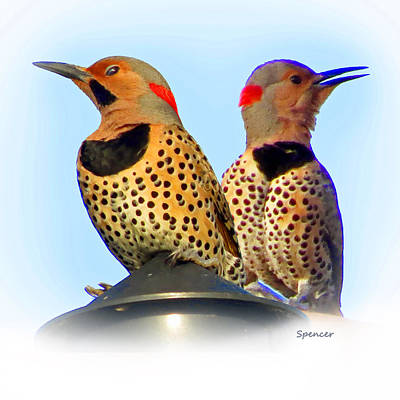 Photograph - Flicker X2 by T Guy Spencer