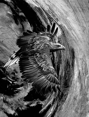 Caverns Mixed Media - Flight For Freedom Black And White by Georgiana Romanovna