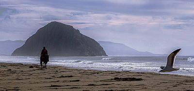 Photograph - Flight From Morro Bay by Jeff Kurtz