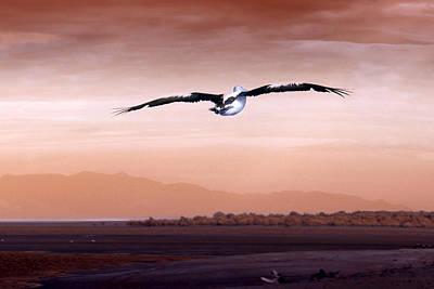 Flight Art Print by Holly Kempe