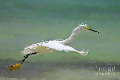 Plumage Wall Art - Digital Art - Flight by John Edwards