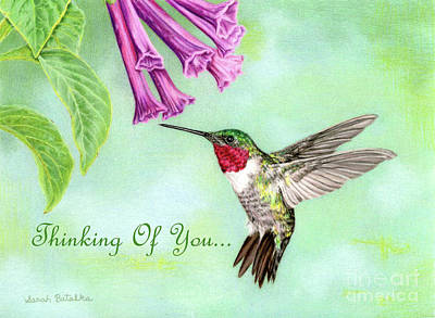 Jewel Tone Drawing - Flight Of Fancy- Thinking Of You Cards by Sarah Batalka