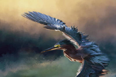 Photograph - Flight Of The Green Heron 2 by Jai Johnson