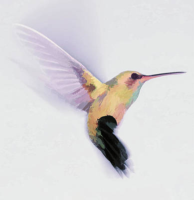 Digital Art - Flight Of The Hummingbird by Barbara A Lane
