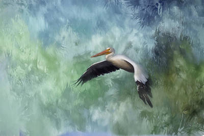 Photograph - Flight Of The White Pelican by Kim Hojnacki