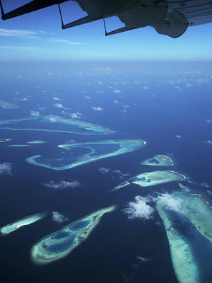 Photograph - Flight Over Coral Reefs by Jenny Rainbow