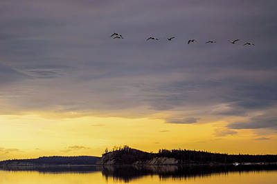Flight Over Goose Bay Print by Ron Day