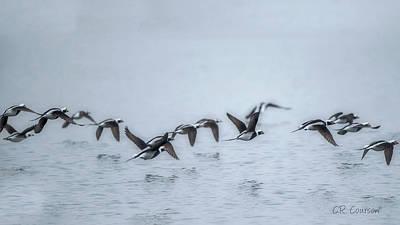 Photograph - Flight Over Lake Ontario by CR Courson