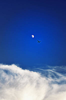 Photograph - Flightpath  by Rose  Hill