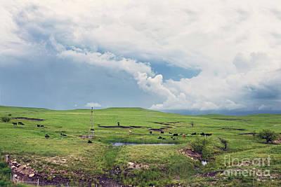 Photograph - Flint Hills Pasture by Catherine Sherman