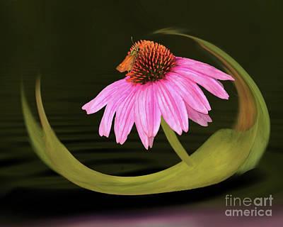 Digital Art - Flipping Beautiful by Maggie Magee Molino