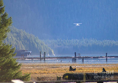 Photograph - Float Plane Take Off by Stanza Widen