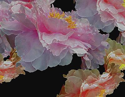 Digital Art - Floating Bouquet 3 by Lynda Lehmann