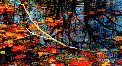 Photograph - Floating Fall Colors by Paul W Faust - Impressions of Light