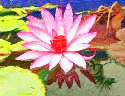 Photograph - Floating Flower And Leaves by Ashish Agarwal